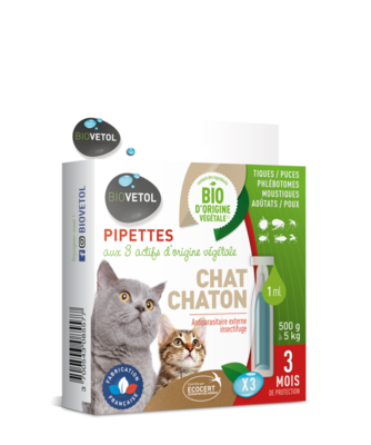 Pipettes chat/chaton x3