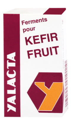Ferments kéfir fruits flacon 4g